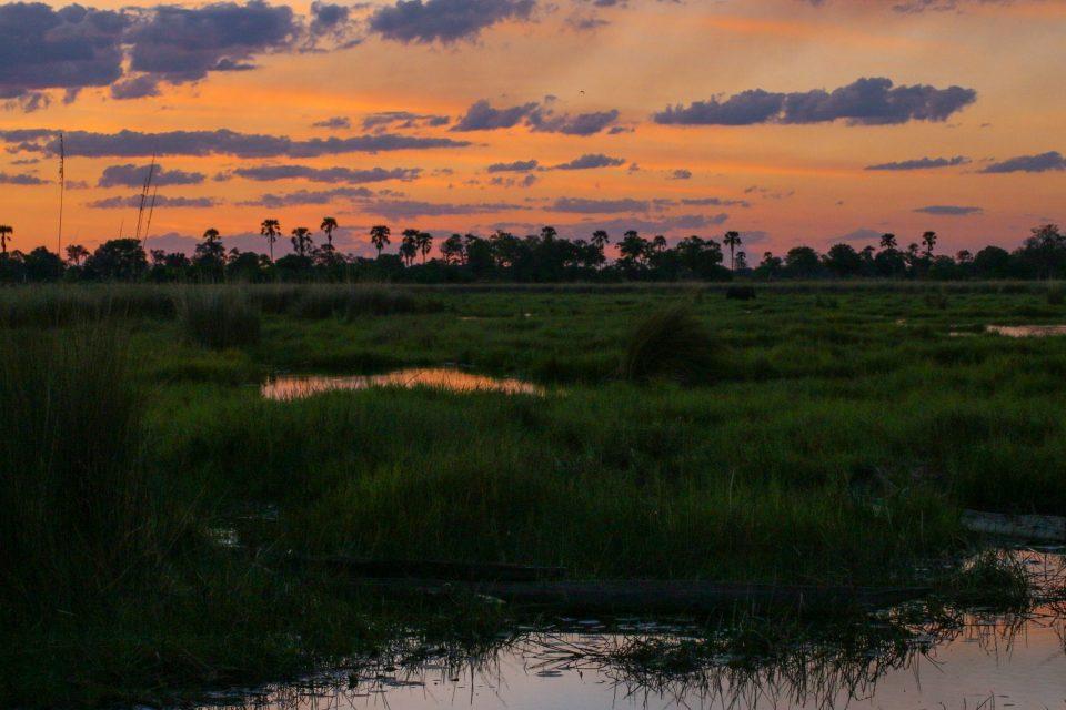 Botswana - Delta