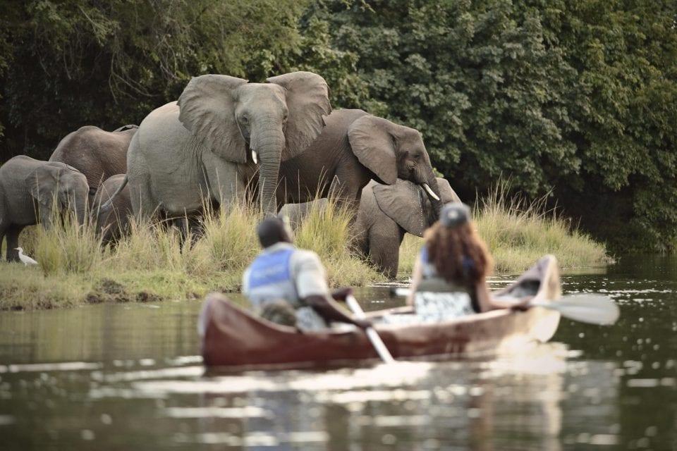 Lower Zambezi (2)