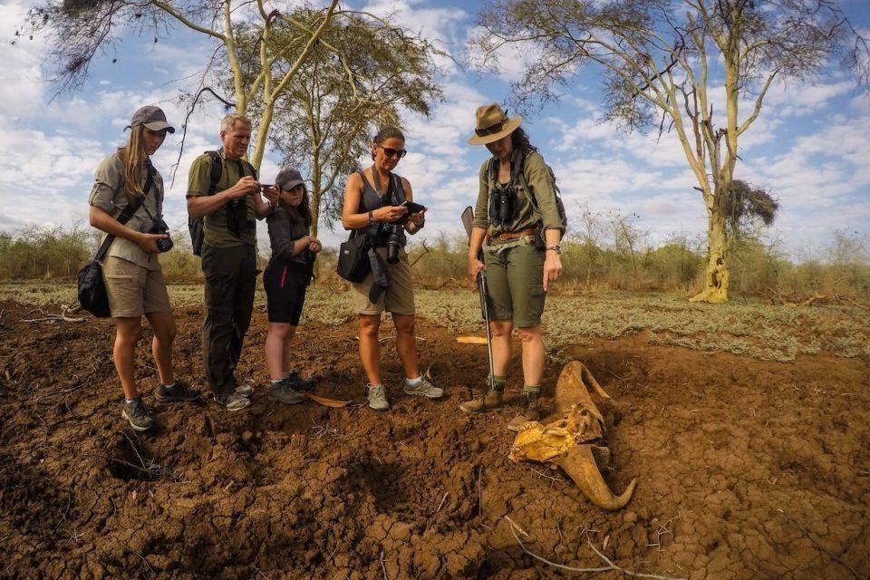Matakataka safari walk